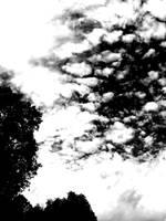 Cloudy sky by silvergrrl