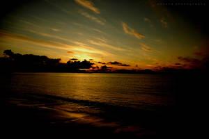 Golden Shores by BoholmPhotography