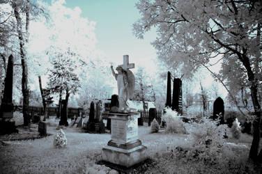 Cemetery 2 by BoholmPhotography