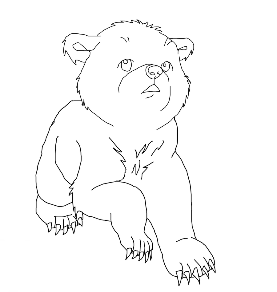 bear cub lineart by soren12