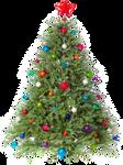 Xmas tree png 1