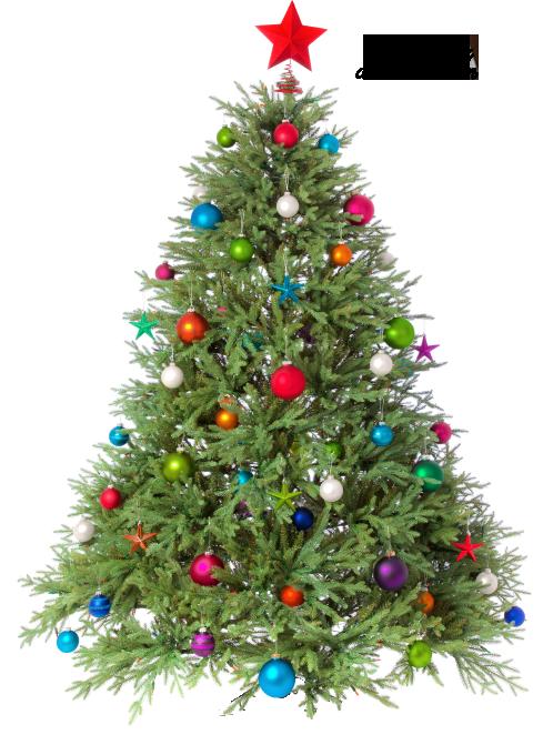 Xmas Tree Png 1 By Iamszissz