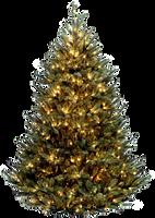 Xmas tree png 2 by iamszissz