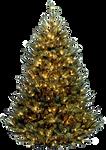 Xmas tree png 2
