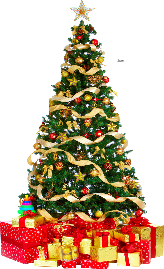Xmas tree png 3 HQ large by iamszissz on DeviantArt