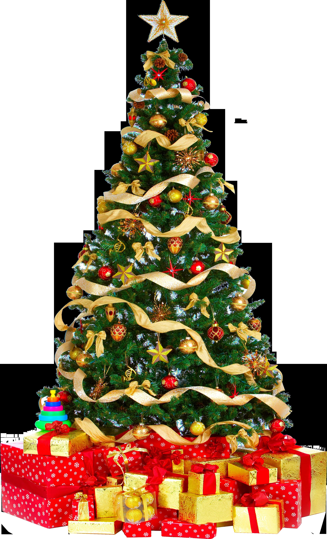 Xmas tree png 3 HQ large by iamszissz on DeviantArt