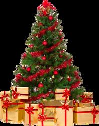Xmas tree png 4 by iamszissz