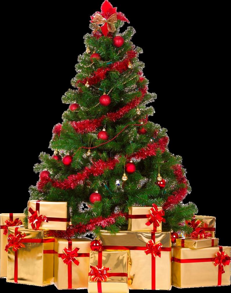 Xmas tree png 4 by iamszissz on DeviantArt