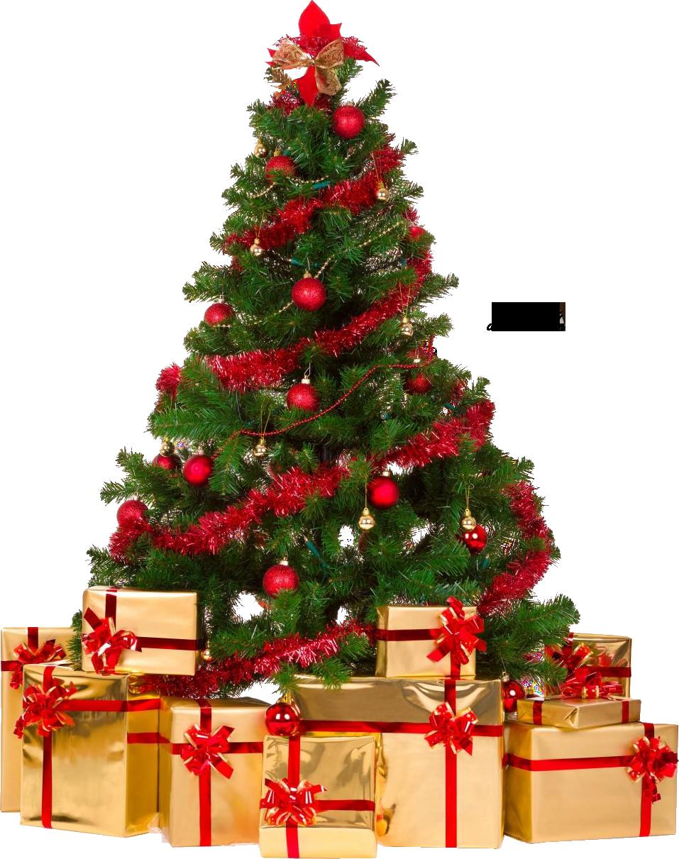 Xmas tree png 4