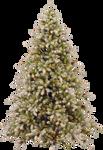 Xmas tree png 5