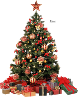 Xmas tree png 6 by iamszissz