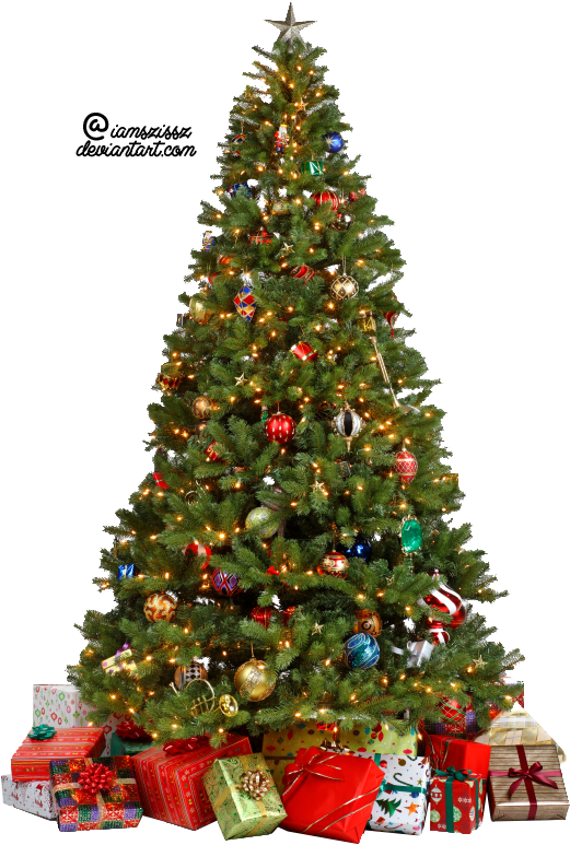 Real Christmas Tree Decorated