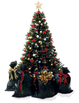 Xmas tree png 11