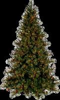 Xmas tree png 13