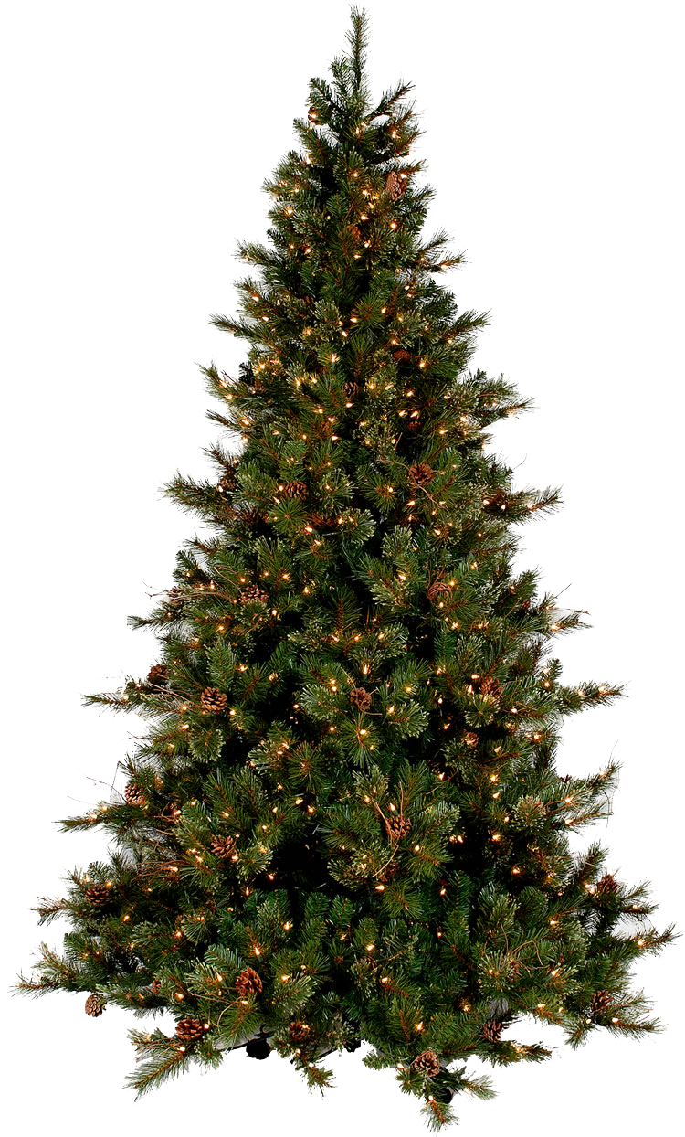 Xmas Tree Png 13 By Iamszissz On Deviantart Available source files and icon fonts for both personal and commercial use. xmas tree png 13 by iamszissz on deviantart