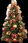 Xmas tree png 19