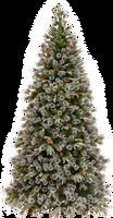 Xmas pine tree png 21