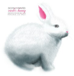 Easter bunny png