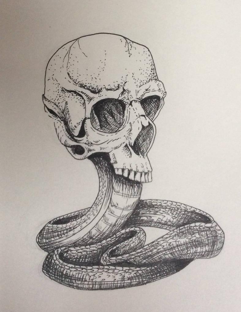 туристов картинки змей карандашом в черепе художник здесь