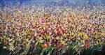 Flower field xv