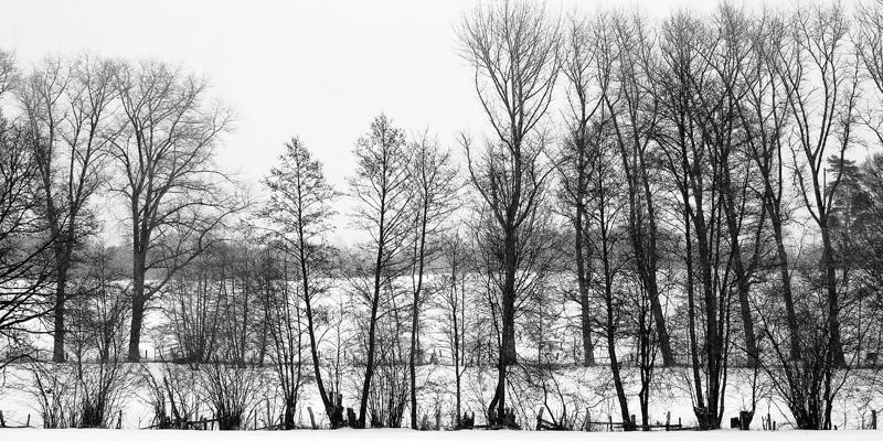 winterscape by augenweide