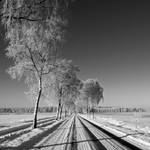 another road in winter