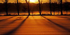 the last sunbeams