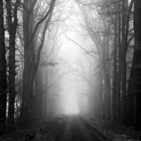 into the dark by augenweide