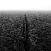 split ground by augenweide
