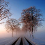 cold outside by augenweide