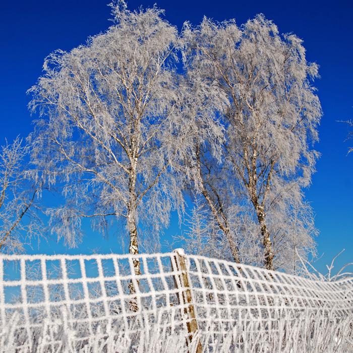 wintermyth by augenweide