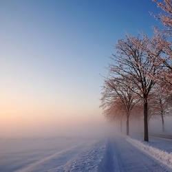 goodbye winter by augenweide