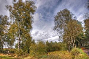 autumnscene by augenweide