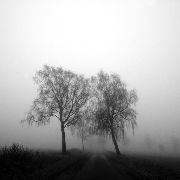twins in the fog by augenweide