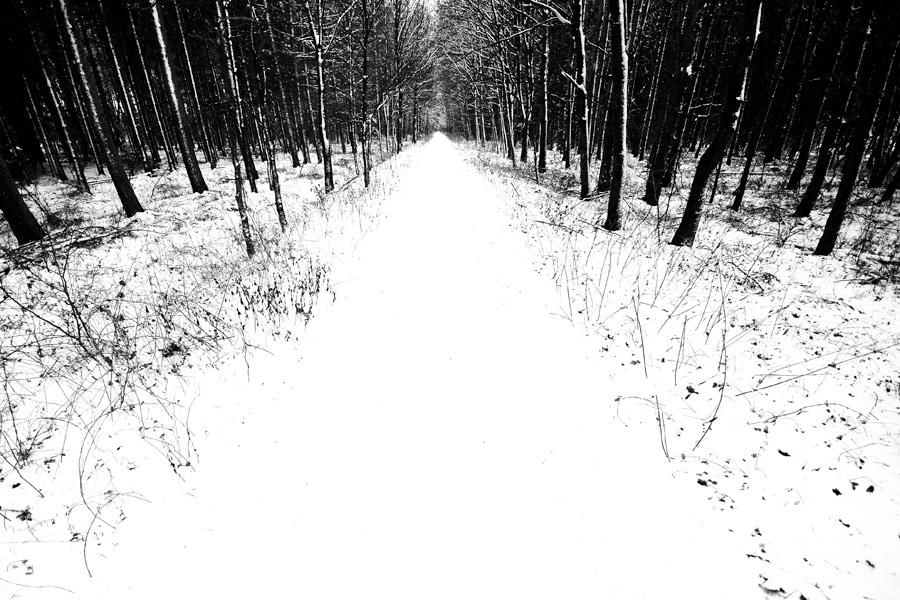 winterpath by augenweide
