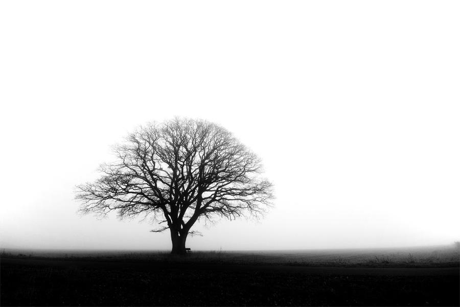 melancholia by augenweide
