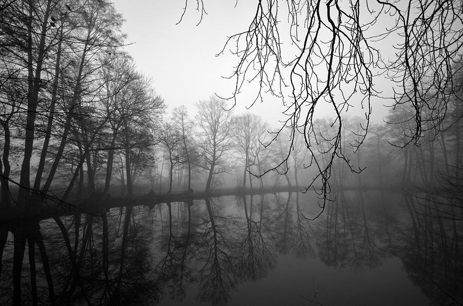 dawn by augenweide