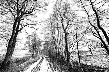 Some Streets Lead Nowhere by augenweide