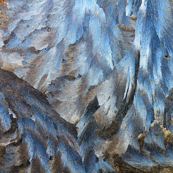 frozen wings by augenweide