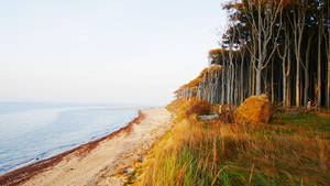 autumn coast by augenweide
