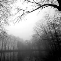 The Sky is Crying by augenweide