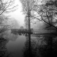 winters voice by augenweide