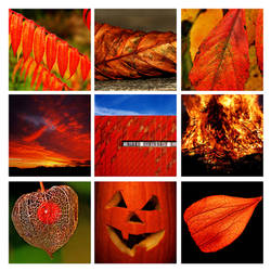 red by augenweide