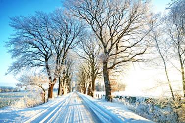 morning winter road