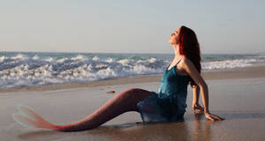 Mermaid 134