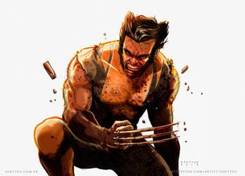 Wolverine by santtos-portfolio