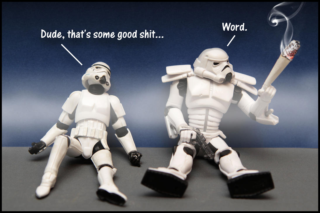 Stonedtroopers... by SWAT-Strachan