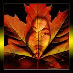 Myself in Leaf by Rheasan