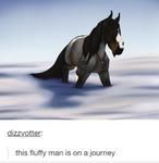 SA | On A Journey