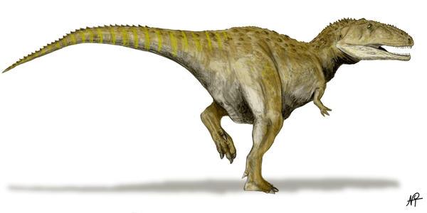 Mapusaurus by NTamura